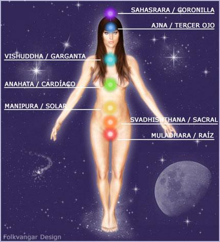 El siguiente dibujo muestra los siete chakras principales en relación al cuerpo físico